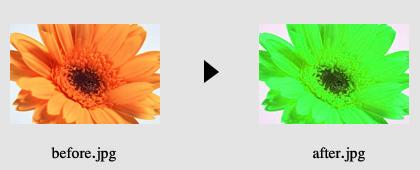 画像の色加工2_5