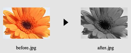 画像の色加工1