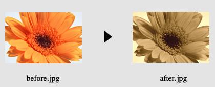 画像の色加工4