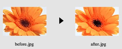 画像の色加工2_1