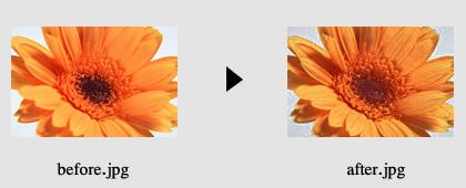 画像の色加工2_2